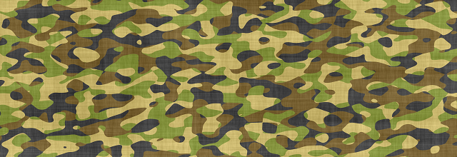 Military-Image-12-2-15_tinypng